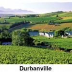 durbanville-town-pick